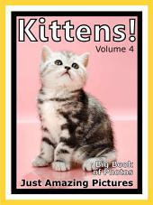 Just Kittens! vol. 4: Big Book of Kitten Cat Baby Cats Photographs & Pictures