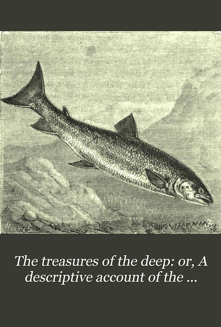 The treasures of the deep: or, A descriptive account of the great fisheries
