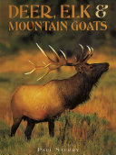 Deer  Elk   Mountain Goats PDF