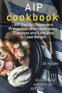 AIP Cookbook PDF