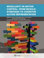Modularity in Motor Control: From Muscle Synergies to Cognitive Action Representation