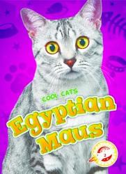 Egyptian Maus Book PDF