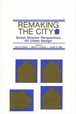 Remaking the City PDF