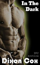 In The Dark: (gay erotica, anonymous online dating)