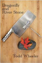 Dragonfly and River Stone