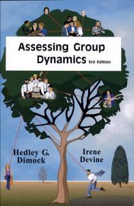Assessing Group Dynamics Book