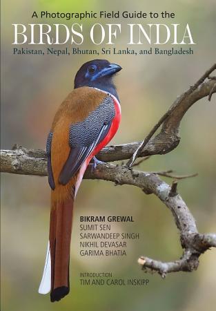 A Photographic Field Guide to the Birds of India  Pakistan  Nepal  Bhutan  Sri Lanka  and Bangladesh PDF