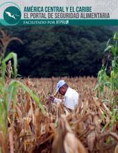 América Central y el Caribe el Portal de Seguridad Alimentaria