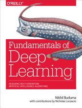 Fundamentals of Deep Learning PDF