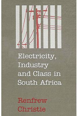 Electricity  Industry and Class in South Africa PDF