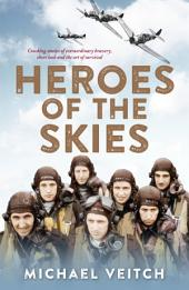 Heroes of the Skies