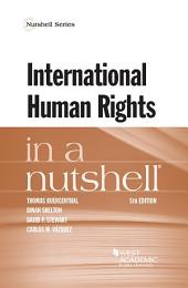 International Human Rights in a Nutshell: Edition 5