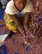 Food policy in 2013: Nutrition Grabs the spotlight as hunger persists