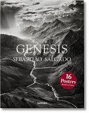 Genesis Book PDF