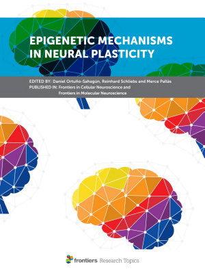 Epigenetic Mechanisms in Neural Plasticity