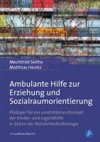 Ambulante Hilfe zur Erziehung und Sozialraumorientierung PDF