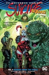 Suicide Squad Vol. 3: Burning Down the House