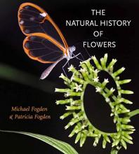 The Natural History of Flowers PDF