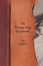 The Vintage Dog Scrapbook   The Papillon