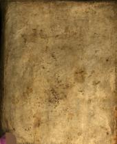 R. P. F. Andreae Coppensteinii ... Nucleus aureus ex tripartitis Petri Bessaei Conceptibus enucleatus