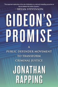 Gideon s Promise Book