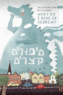 Short Stories in Colloquial Hebrew: Engaging Reader for the Intermediate Learners