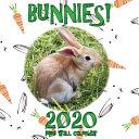 Bunnies  2020 Mini Wall Calendar