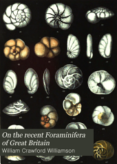On the Recent Foraminifera of Great Britain: Volume 29