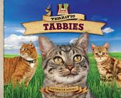 Terrific Tabbies