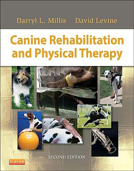 Canine Rehabilitation and Physical Therapy   E Book PDF