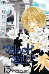 Black Bird: Volume 13