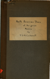 The North American bees of the genus Nomia