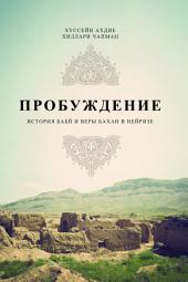 Awakening: A History of the Babi and Baha'i Faiths in Nayriz (Russian Language Edition)