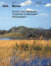 Manual constructed wetlands treatment of municipal wastewaters.