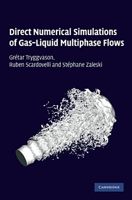 Direct Numerical Simulations of Gas–Liquid Multiphase Flows