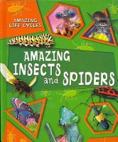 Amazing Insects and Spiders PDF