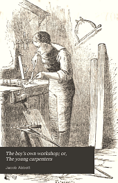 The boy's own workshop; or, The young carpenters