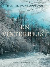 En vinterrejse