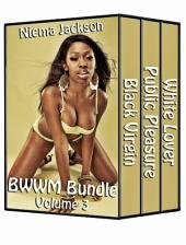 BWWM Bundle - Volume 3 (Taboo Interracial Romance BWWM)