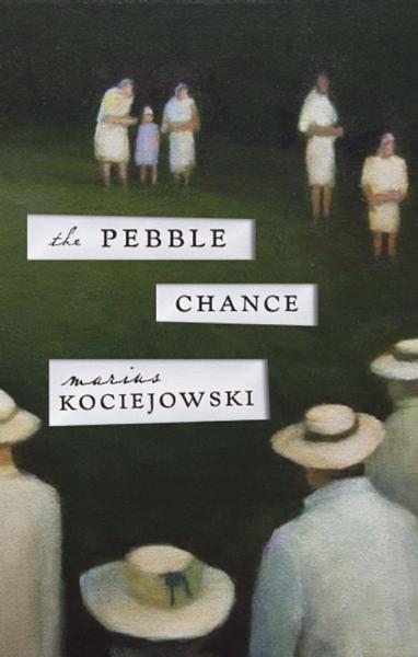 The Pebble Chance Pdf Book