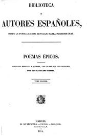 Poemas epicos: Coleccion dispuesta y rev., con notas biograficas y una advertencia preliminar, Volumen 29