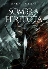 Sombra perfecta (e-original)