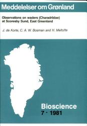 Observations On Waders Charadriidae At Scoresby Sund East Greenland Book PDF