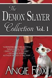 Accidental Demon Slayer Box Set: Books 1-3