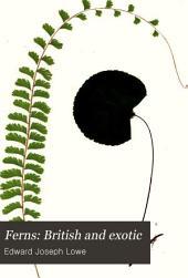 Ferns: British and Exotic: Volume 3