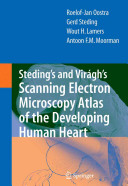 Steding s and Vir  gh s Scanning Electron Microscopy Atlas of the Developing Human Heart PDF