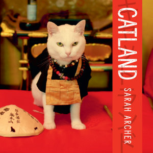 Catland  The Soft Power of Cat Culture in Japan