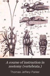 A Course of Instruction in Zootomy (vertebrata.)
