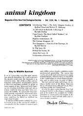 Animal Kingdom PDF