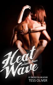 Heat Wave Volume 3: Standalone Erotic Romance Novella